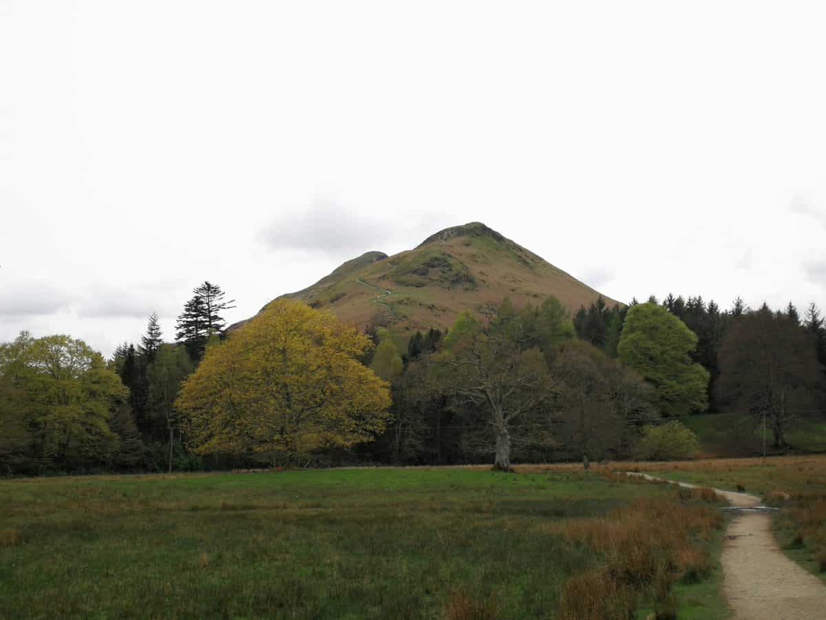 Looking up towards Catbells, one of the 214 Wainwrights in alphabetical order on our list