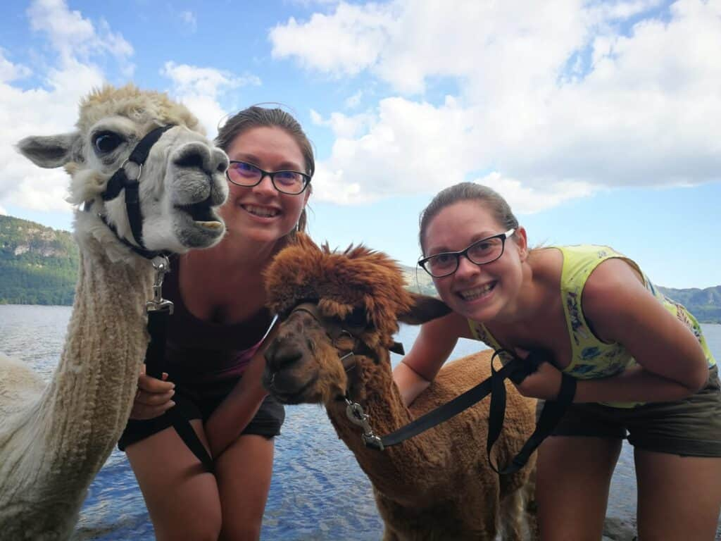 Hazel and Zoe with alpacas in the Lake District