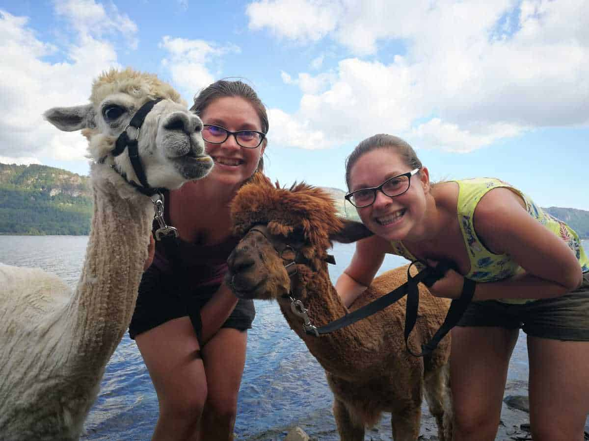 Us at Alpacaly Ever After in Keswick Lake District