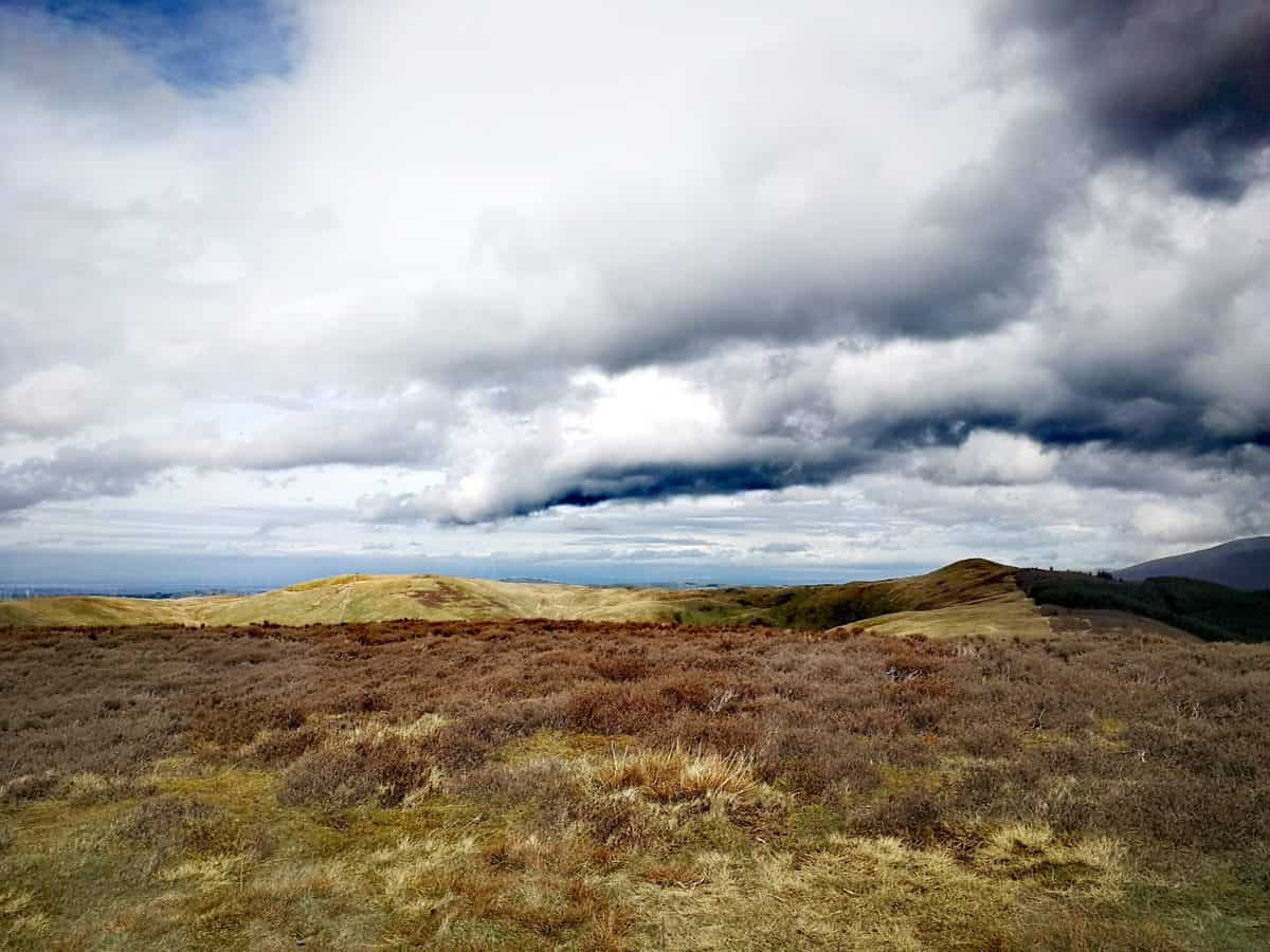 View from Whinlatter Fell