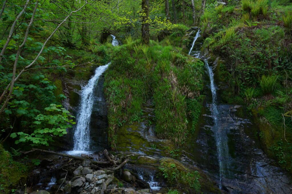 Holme Force near Loweswater