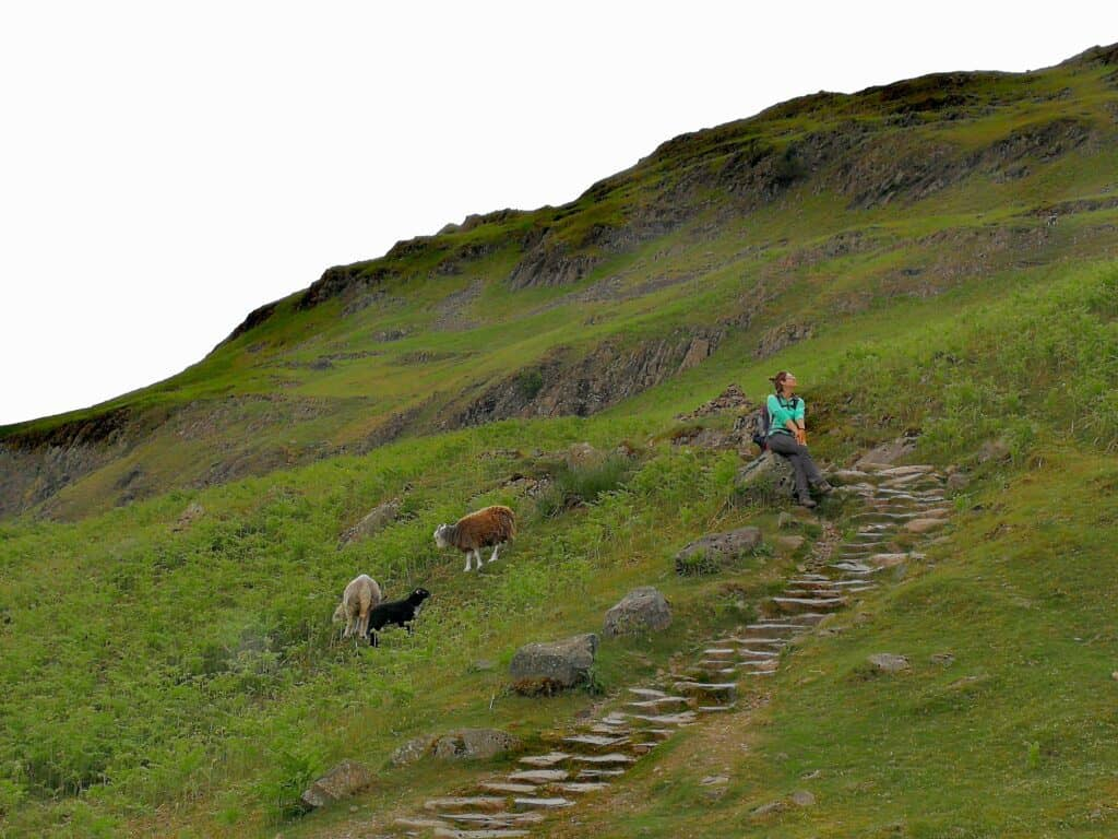 The steps leading back down from Helm Crag, ooh, and me.